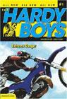 hardyboys2