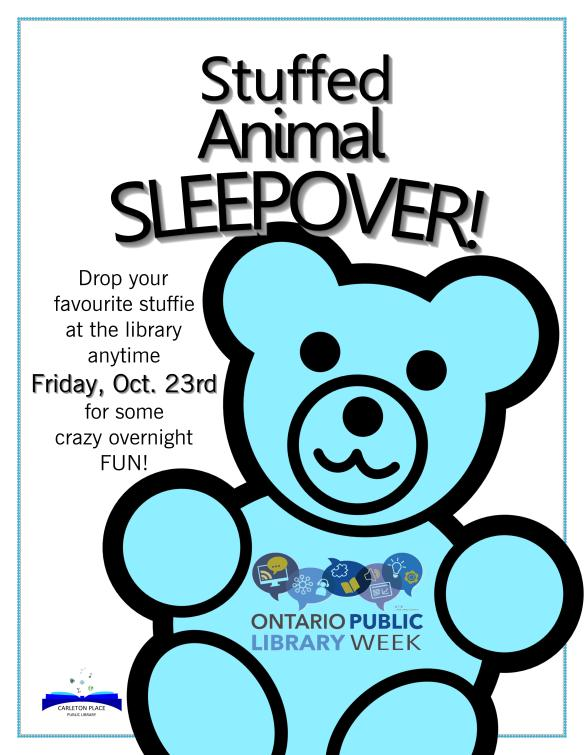 Stuffed Animal Sleepover poster